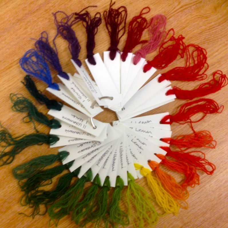 Acid Dye Colour Wheel Workshop