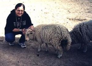 sheepandme